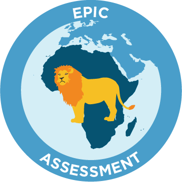 epic assessment icon